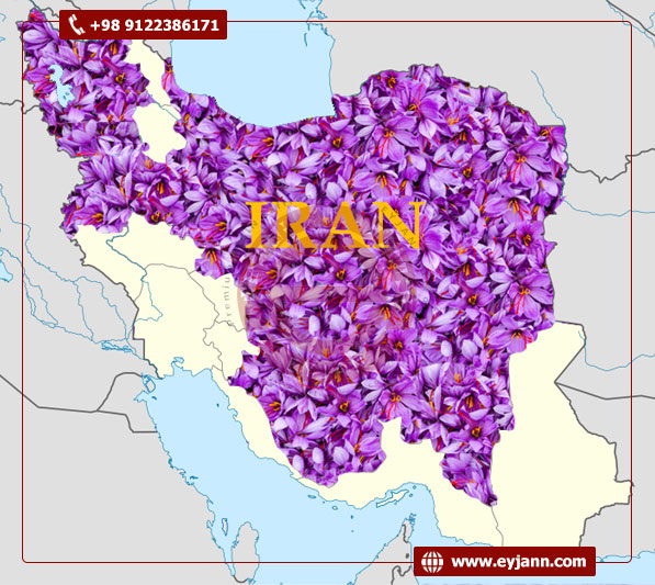 Ensure 100% purity of wholesale Iranian saffron As we all know Iran is the world's leading producer of saffron and its share in the saffron world production and export is almost 90%. This high demand shows the high quality of the first-class Iranian saffron and confirms that you can't find saffron with the quality same as the quality of Iranian saffron anywhere else. So buying wholesale saffron from an Iranian manufacturer saffron company that grows saffron from farm to processing and packaging would be a great offer.